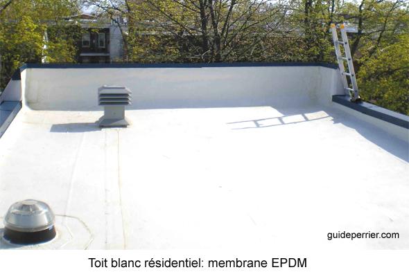 inspection toits plats reparation
