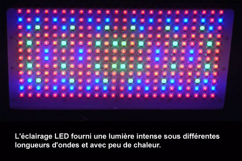 2_eclairage-led