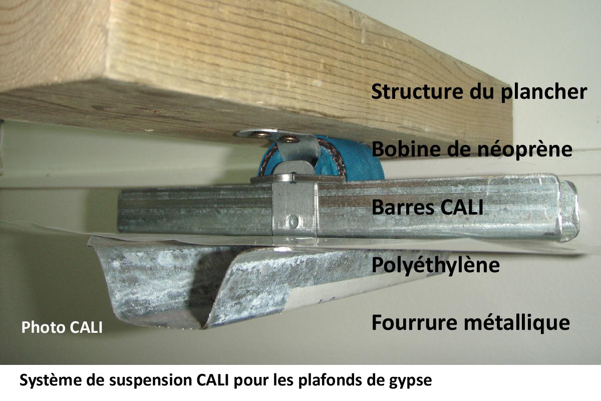 _suspension