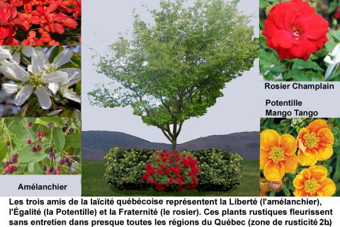 Le massif des 3 amis: un symbole de la laïcité au Québec